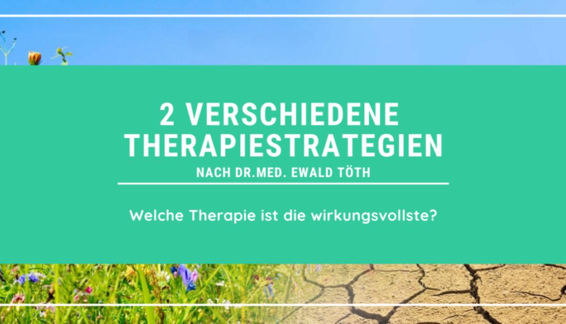2 Therapiestrategien